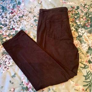 Style & Co dark brown slim leg jeans